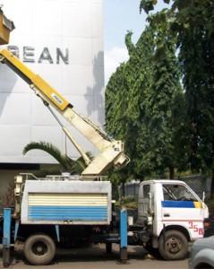 mobil crane 12 meter