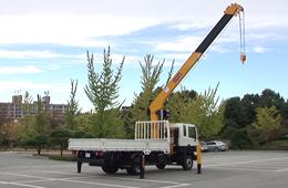 truck mounted crane HGC976M